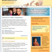CARE-2 Assessment
